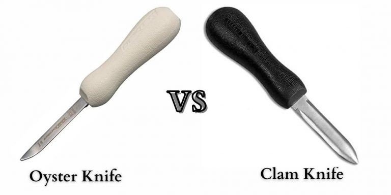 Oyster Knife vs. Clam Knife